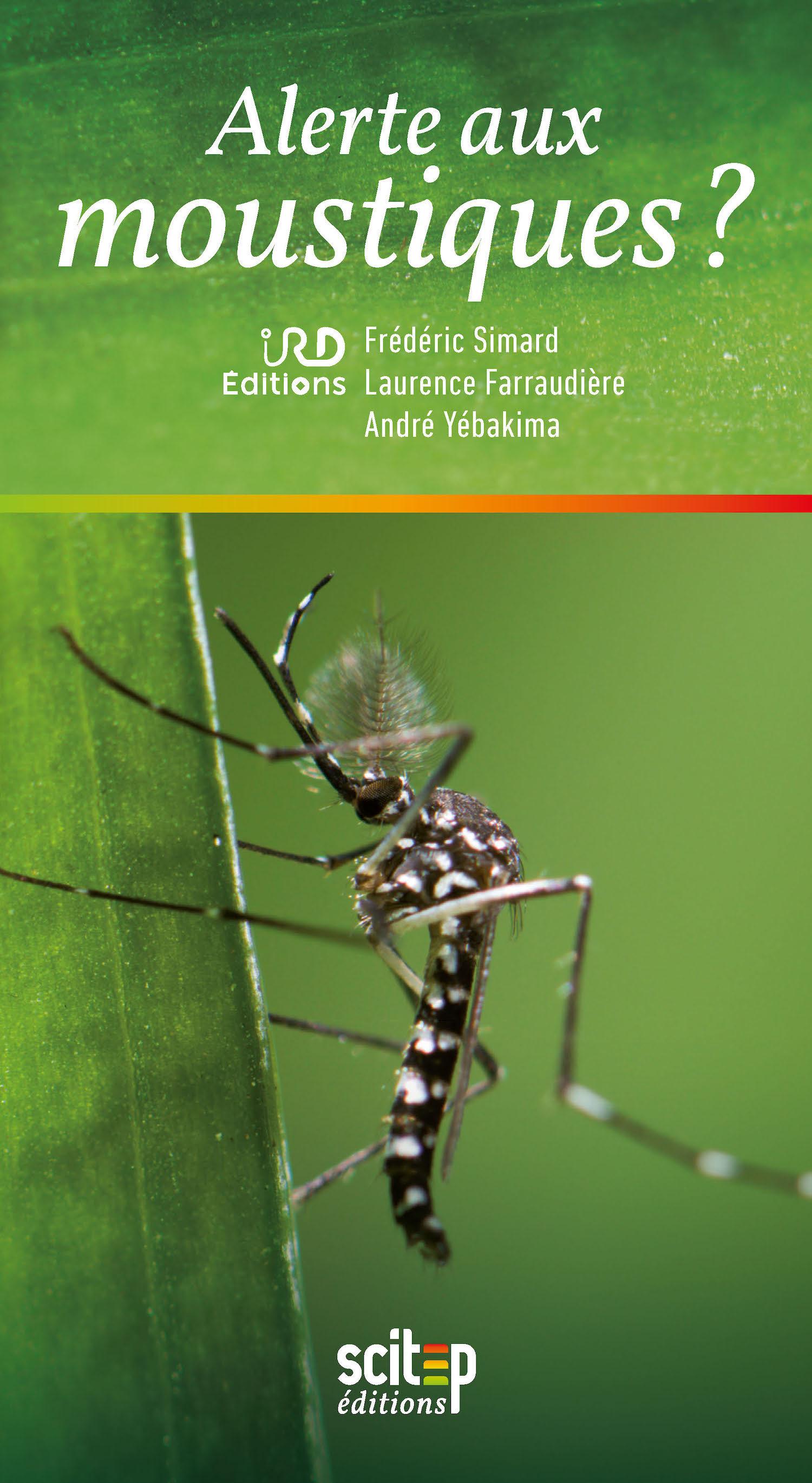 Alerte aux moustiques ?