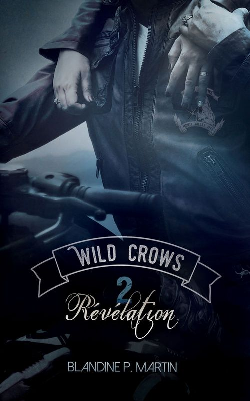 Wild Crows - 2. Révélation