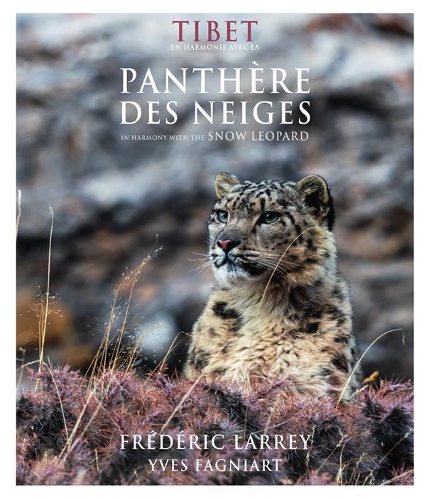 Tibet en harmonie avec la panthère des neiges ; in harmony with the snow leopard