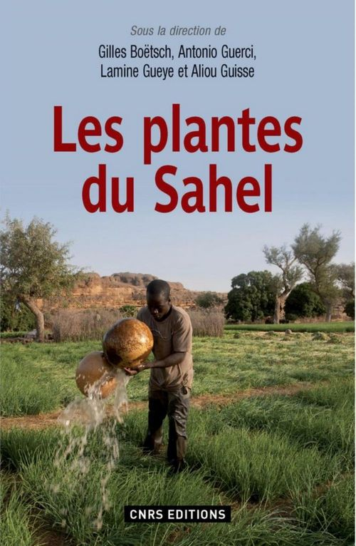 Les plantes du Sahel ; plantes alimentaires, médicinales et cosmétiques