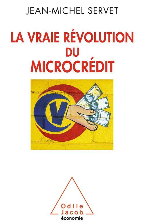 La vraie révolution du micro-crédit