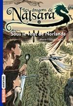 Vente Livre Numérique : Les dragons de Nalsara, Tome 20  - Alban Marilleau - Marie-Hélène Delval