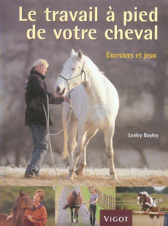 Le travail à pied de votre cheval