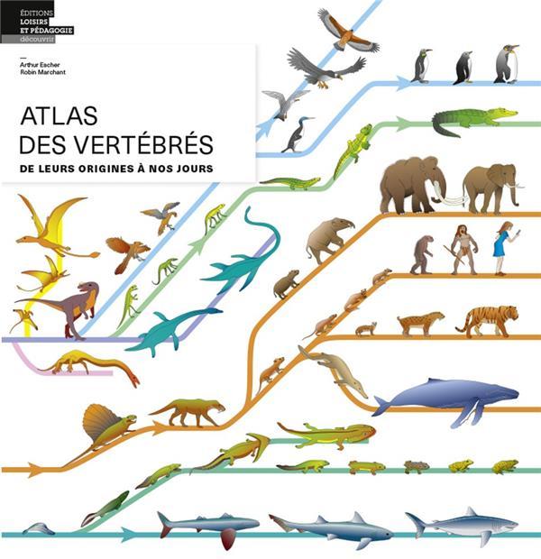 Atlas des vertébrés ; de leurs origines à nos jours