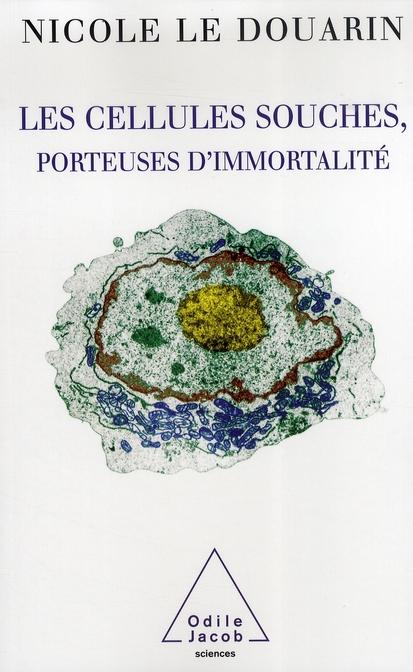 Les Cellules Souches, Porteuses D'Immortalite