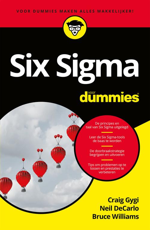 Six Sigma voor Dummies