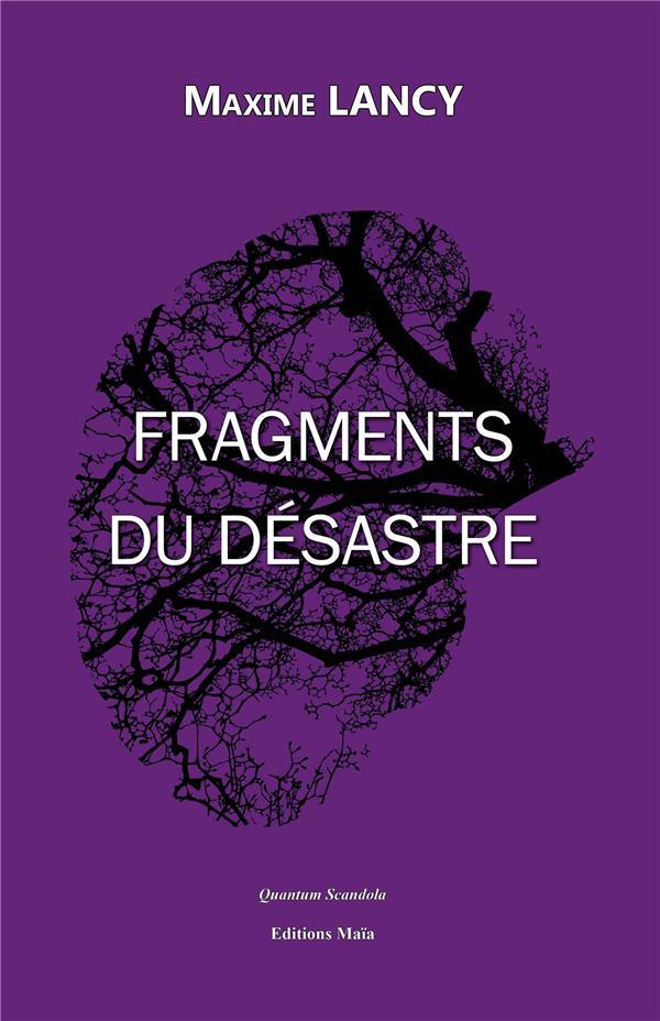 Fragments du désastre