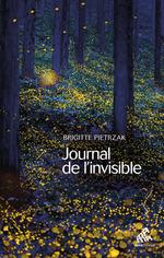 Vente Livre Numérique : Journal de l'invisible  - Brigitte Pietrzak