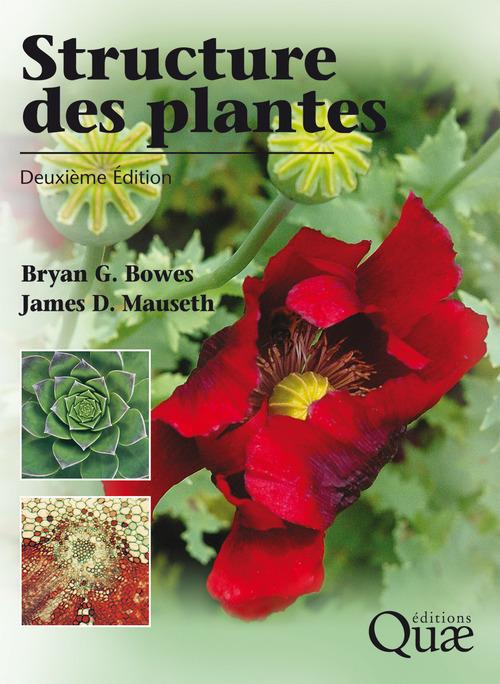 Structure des plantes