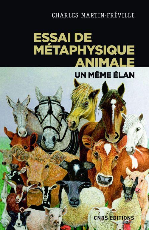 Essai de métaphysique animale ; un même élan