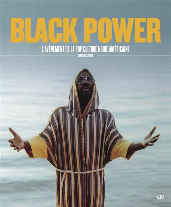 Black power ; l'avènement de la pop culture afro-americaine