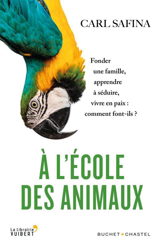 à l'école des animaux ; fonder une famille, apprendre à séduire, vivre en paix : comment font-ils ?