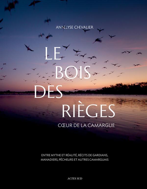 Le bois des Rièges ; coeur de la Camargue