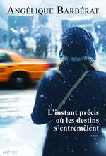 Vente Livre Numérique : L'instant précis où les destins s'entremêlent  - Angélique Barbérat