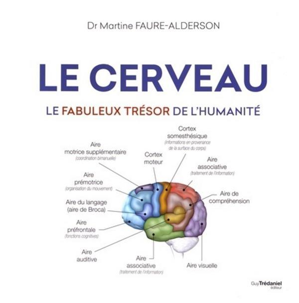 FAURE-ALDERSON, MARTINE - LE CERVEAU  -  LE FABULEUX TRESOR DE L'HUMANITE