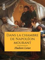 Vente EBooks : Dans la chambre de Napoléon mourant  - Hudson Lowe - Paul Frémeaux