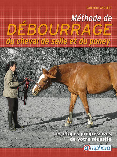 méthode de débourrage du cheval de selle et du poney ; les étapes progressives de votre réussite
