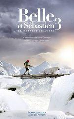 Vente Livre Numérique : Belle et Sébastien - novélisation - Tome 3 - Le Dernier Chapitre  - Christine Féret-Fleury