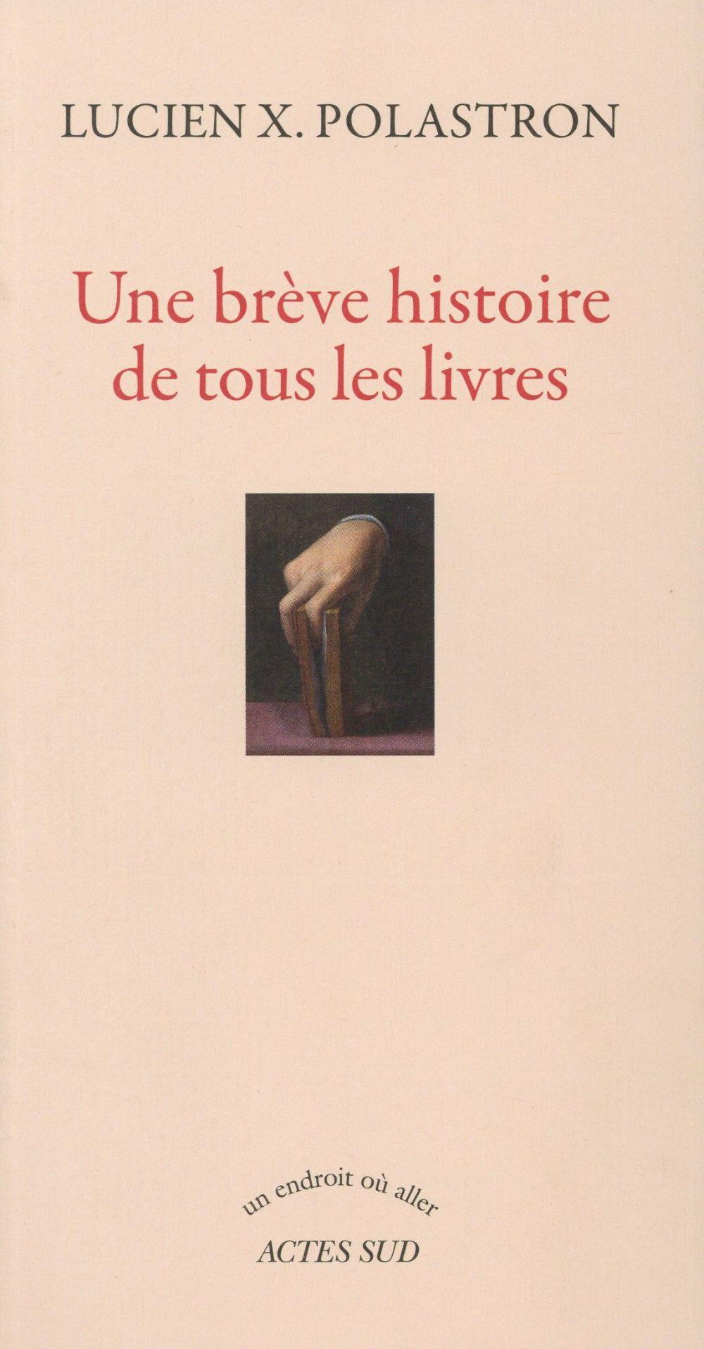Une Breve Histoire De Tous Les Livres