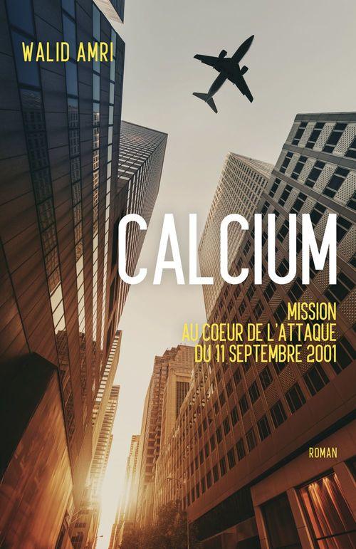 calcium ; mission au coeur de l'attaque du 11 septembre 2001