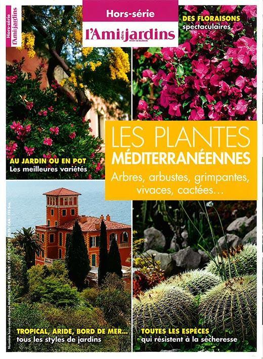 L'AMI DES JARDINS ; les plantes méditerranéennes ; arbres, arbustes, grimpantes