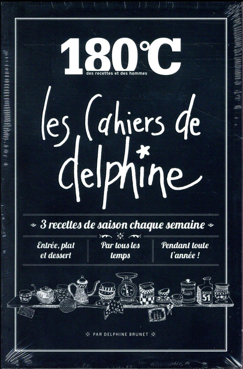 Les cahiers de Delphine