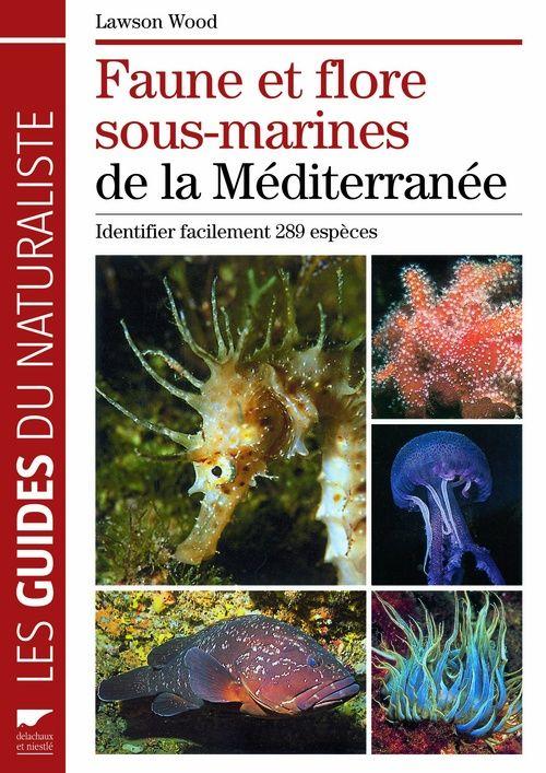 Faune et flore sous-marines de la Méditerranée