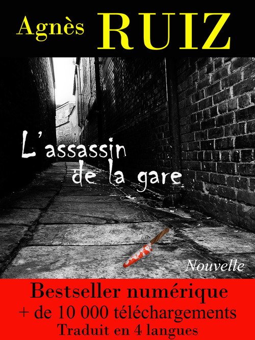 L'assassin de la gare (Les enquêtes de Rachel Toury)