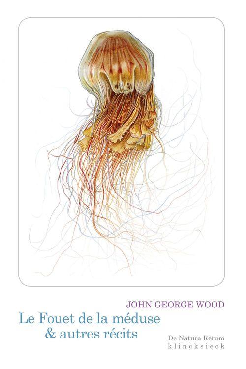 Le fouet de la meduse & autres recits