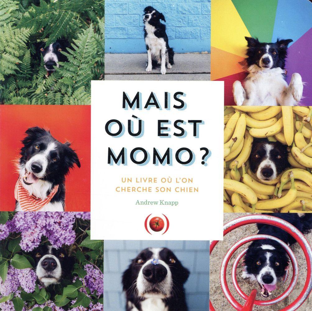 Mais où est momo ? un livre où l'on cherche son chien