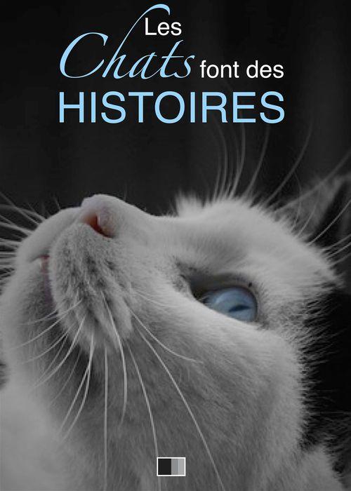 Les chats font des histoires