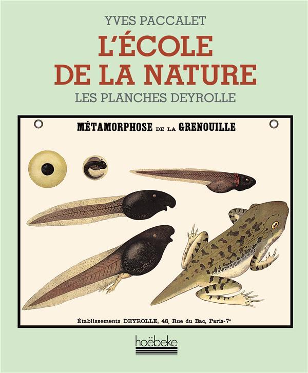 l'ecole de la nature - les planches deyrolle
