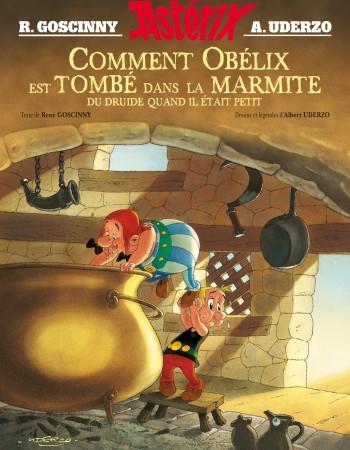 Comment Obélix est tombé dans la marmite du druide quand il était petit