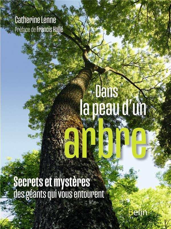Dans la peau d'un arbre ; secrets et mystères des géants qui vous entourent