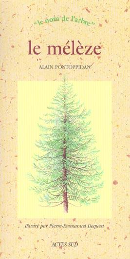 Meleze (le) - le nom de l'arbre