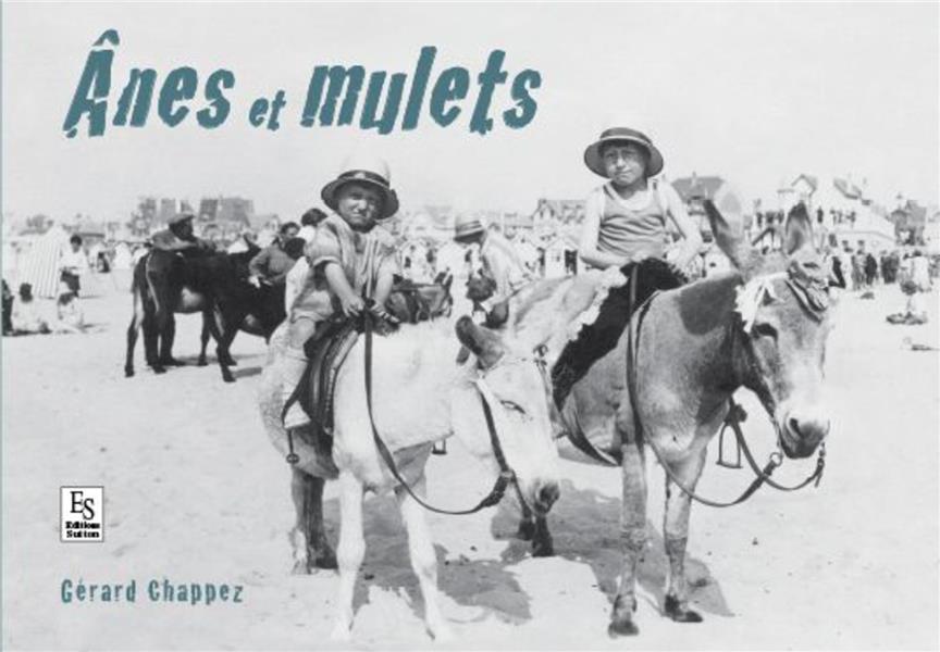 ânes et mulets