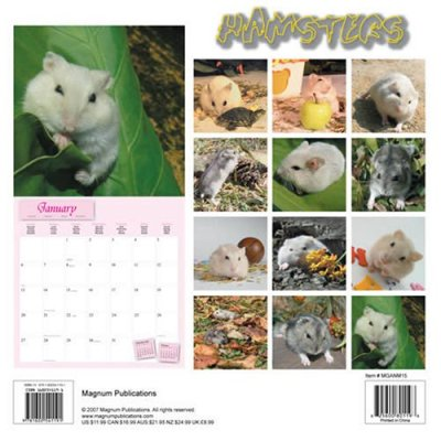 Hamsters (calendrier 2008)