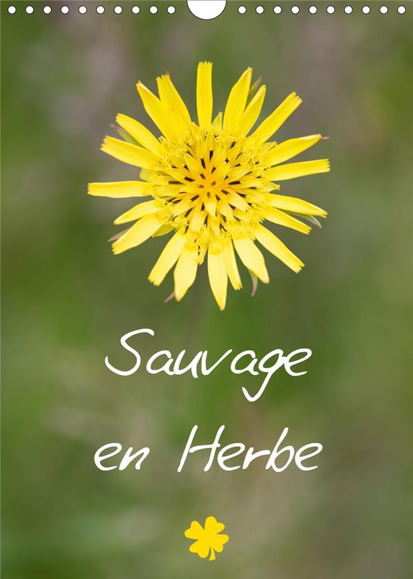 Sauvage en herbe (édition 2020)