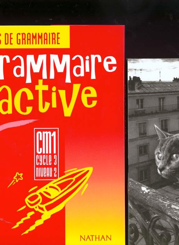 Grammaire active ; CM1 ; fichier consommable