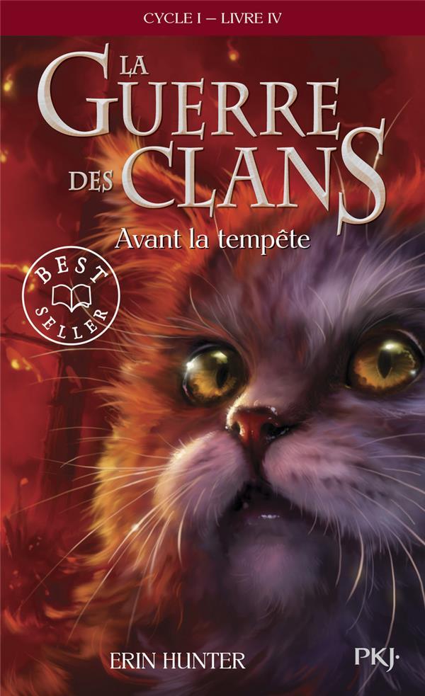 HUNTER, ERIN - LA GUERRE DES CLANS - CYCLE I - TOME 4 AVANT LA TEMPETE -POCHE- - VOL04