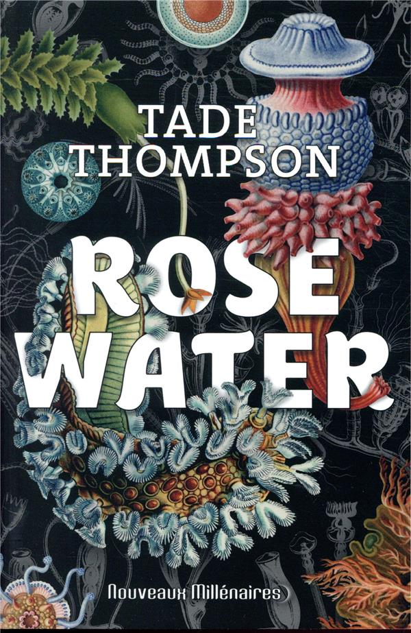 Rosewater t.1