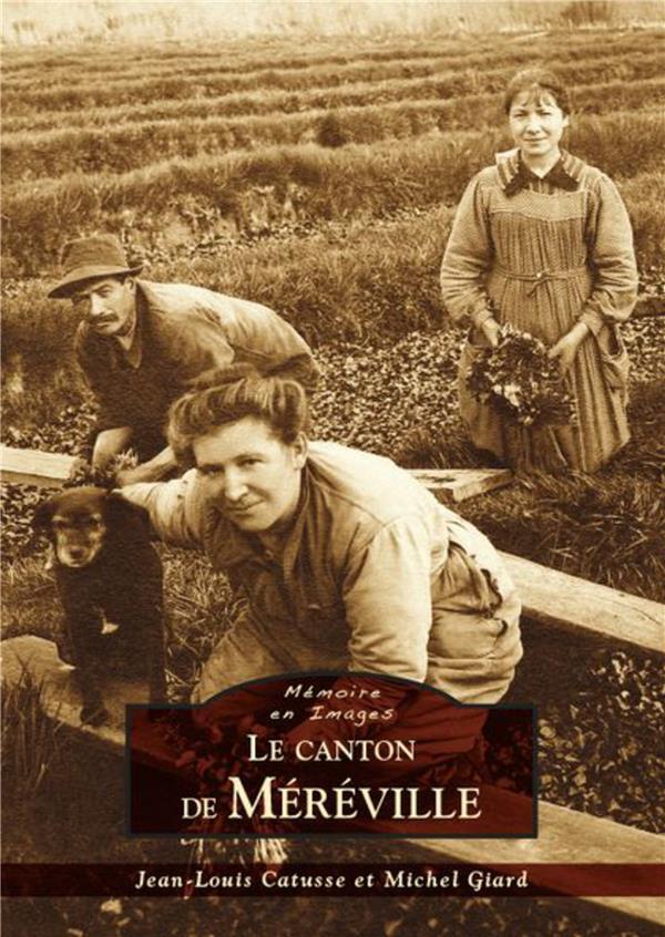 Le canton de Mereville