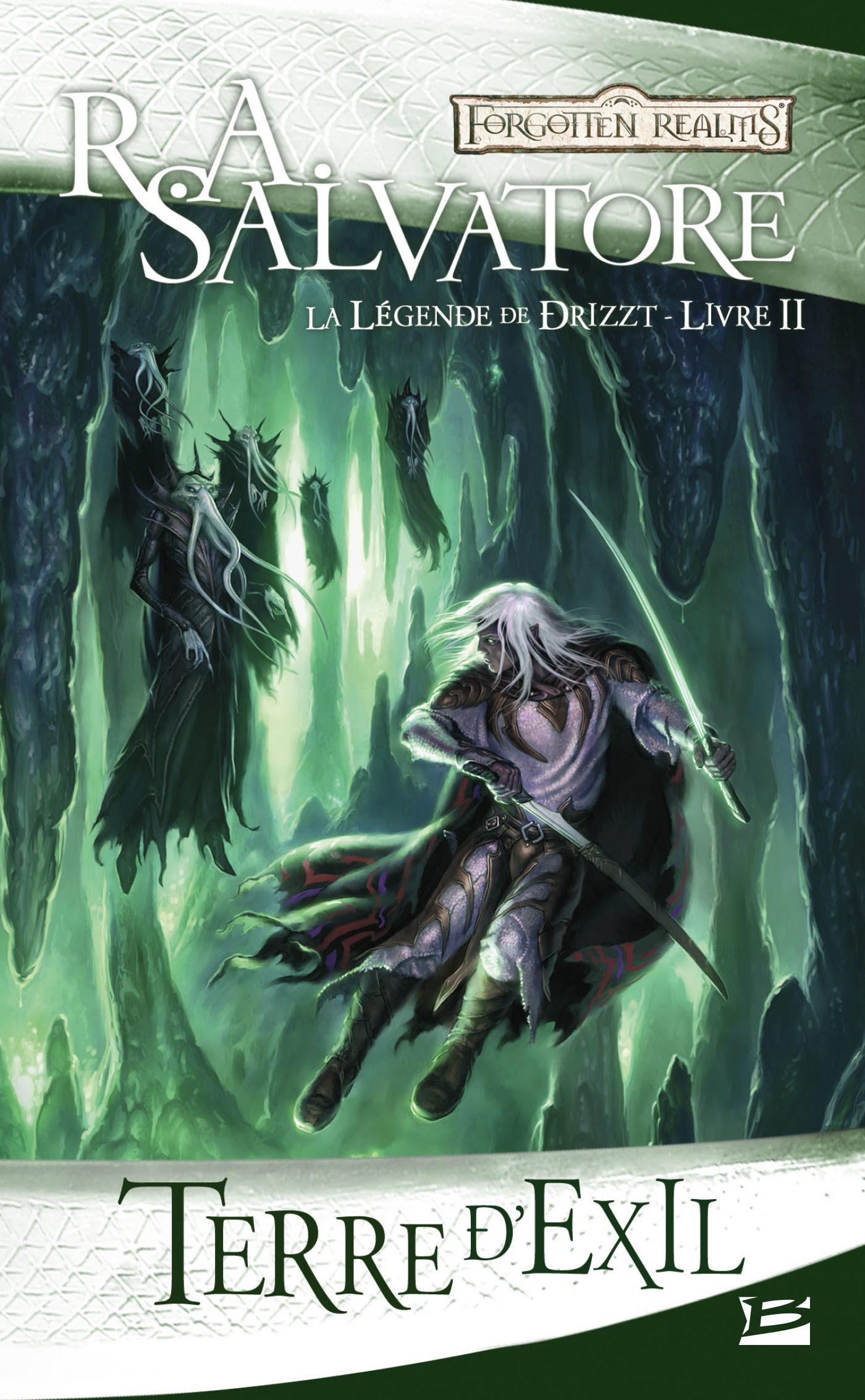 Les Royaumes Oubliés - la légende de Drizzt T.2 ; terre d'exil