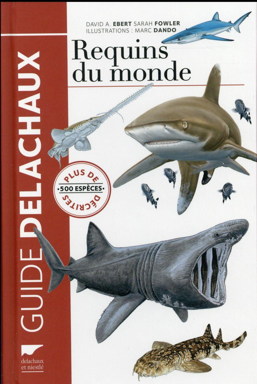 Requins du monde ; plus de 500 espèces décrites