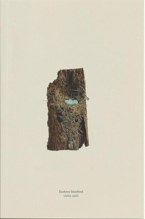 Carnet merlebleu de l'est (eastern bluebird, sialia sialis)