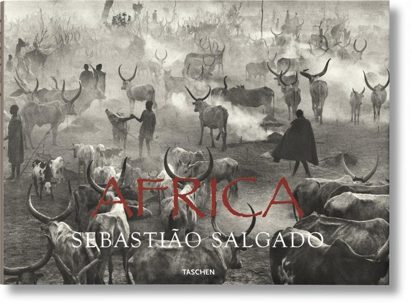 FO-SALGADO AFRICA