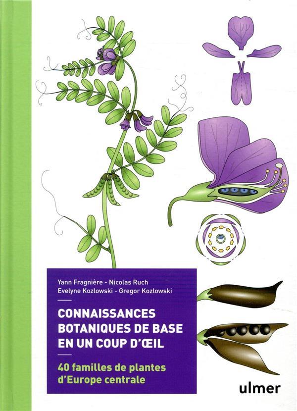 Connaissances botaniques en un coup d'oeil ; 40 familles de plantes d'Europe centrale
