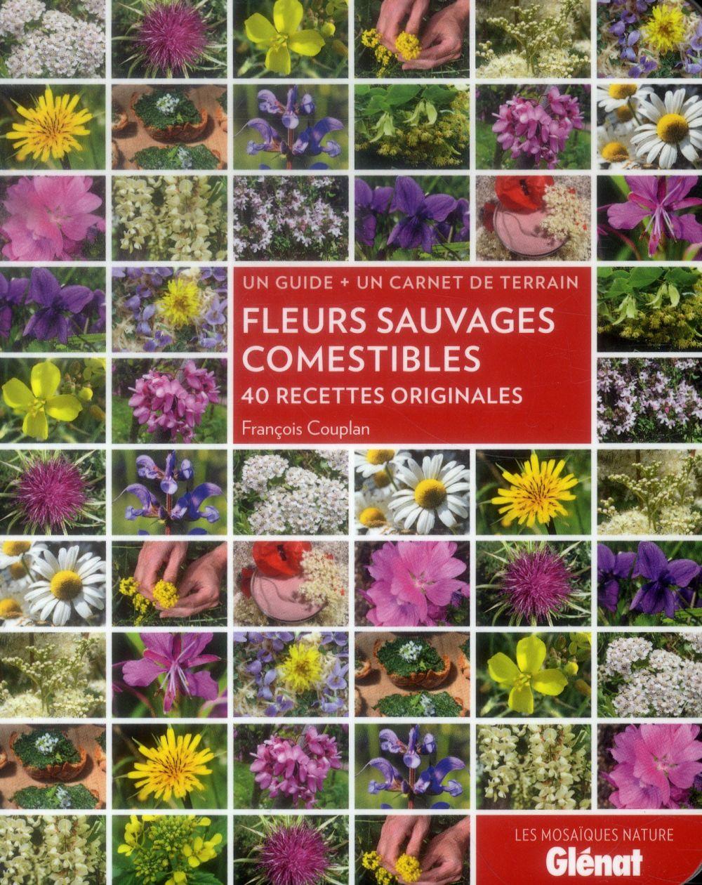 Fleurs sauvages comestibles