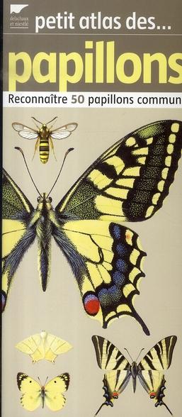 Petit atlas des papillons ; reconnaître 50 papillons communs