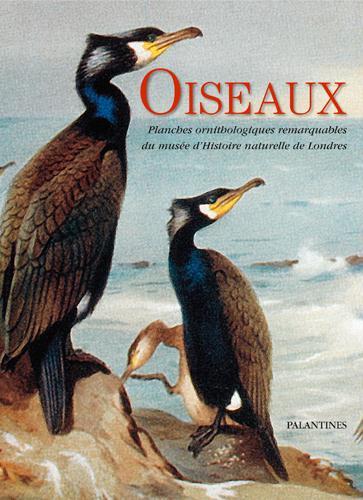 Oiseaux ; planches ornithologiques remarquables du musée d'Histoire naturelle de Londres